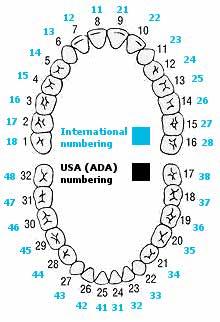 Numerologie date de naissance couple image 3